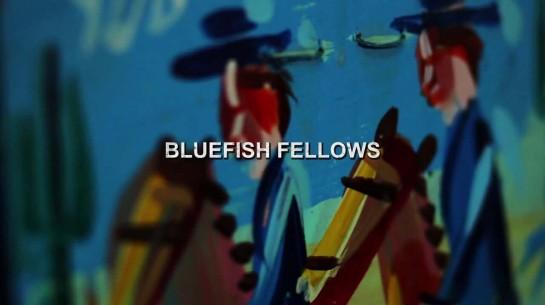 Bluefish Fellows – Unwind (In-Studio Video)